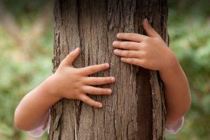 Преимущество мебели из натурального дерева